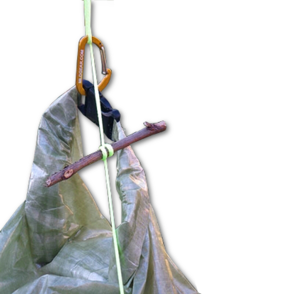 Pro Bear Bag Hang Technique